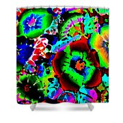 Pizzazz 15  Shower Curtain