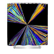 Pizzazz 21 Shower Curtain
