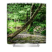 Place Of Peace Shower Curtain