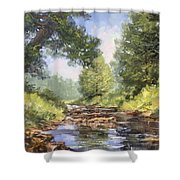 Placid Stream Shower Curtain