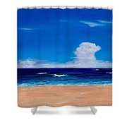 Placidity Shower Curtain