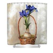 Plain Blue Iris Shower Curtain