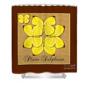 Plain Sulphur Butterfly Wheel Shower Curtain