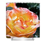 Planet Of The Rose Shower Curtain