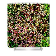 Plant Power 4 Shower Curtain by Eikoni Images