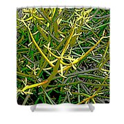 Plant Power 5 Shower Curtain