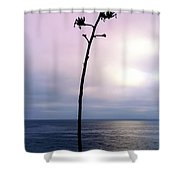 Plant Silhouette Over Ocean Shower Curtain