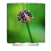 Plant3 Shower Curtain