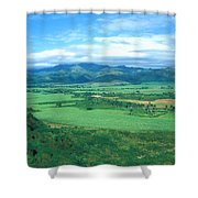 Plantation Shower Curtain