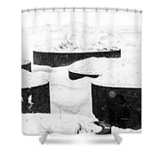 Planters And Snow Shower Curtain