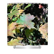 Planting Fields / Leaves Shower Curtain
