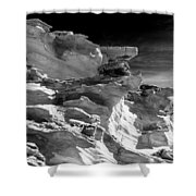 Plants And Birds And Rocks And Things Shower Curtain