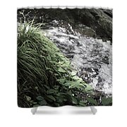 Plants By The River Shower Curtain