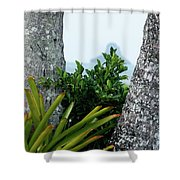 Plantside The Island Shower Curtain