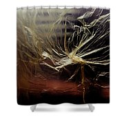 Plastic Bag 01 Shower Curtain by Grebo Gray