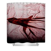Plastic Bag 06 Shower Curtain by Grebo Gray