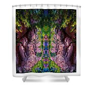 Plate 33 Shower Curtain