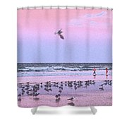 Play At The Beach Shower Curtain