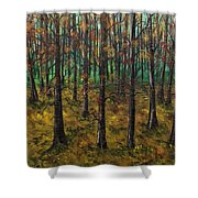 Play Back Shower Curtain