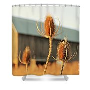 Play On Focus Shower Curtain