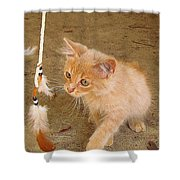 Play Time With Kitty Shower Curtain