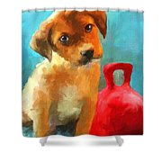 Play With Me Shower Curtain