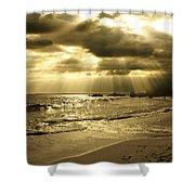 Playa De Oro Shower Curtain