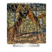 Playful Red Fox Shower Curtain