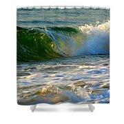 Playful Surf Shower Curtain