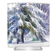 Playground In Winter Shower Curtain