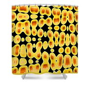 Playing With Eggs Shower Curtain