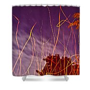 Playing With Fire  I Shower Curtain