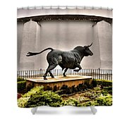 Plaza De Toros - Ronda Shower Curtain
