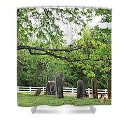 Pleasant Forest Cemetery Shower Curtain