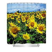 Pleasant Warmth Shower Curtain