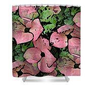 Pleasantly Pink Shower Curtain