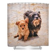 Please Take Me Home 3 Shower Curtain