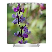 Pleasing Purple Plant Picture Shower Curtain
