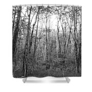 Pleasure Of Pathless Woods Bw Shower Curtain