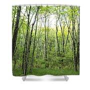 Pleasure Of Pathless Woods - Nat Shower Curtain