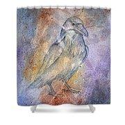 Pleistocene Raven 1 Shower Curtain
