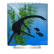 Plesiosaurus Shower Curtain