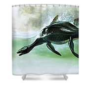 Plesiosaurus Shower Curtain by William Francis Phillipps