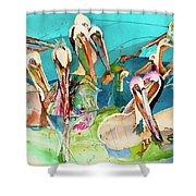 Plethora Of Pelicans Shower Curtain