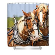 Plow Buddies Shower Curtain