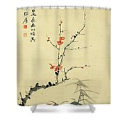 Plum And Bamboo Shower Curtain