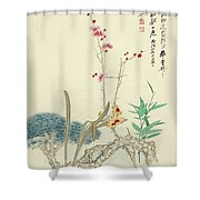 Plum Pine Orchid Shower Curtain