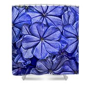 Plumbago Shower Curtain