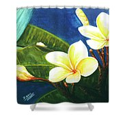 Plumeria Flower # 140 Shower Curtain