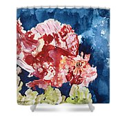 Png Leaf Fish Shower Curtain